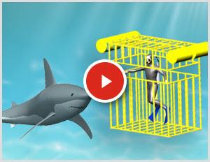 SOLIDWORKS Simulation Köpekbalıkları ile Yüzüyor
