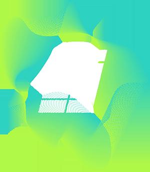 ttz 21 logo 2